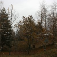 gal_automne_00015